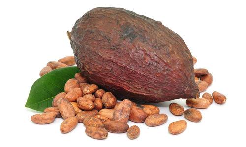 Бобы какао дерева