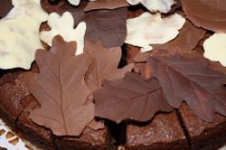 Фигурки из шоколада сделанные с помощью листьев