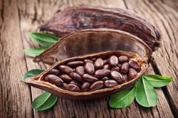 Какао-бобы для настоящего шоколада