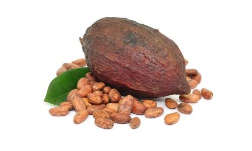 kakao bobi3 500x300 - Как можно употреблять какао бобы?