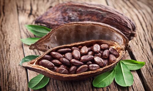 Бобы какао