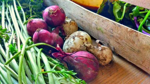 эко еда - фермерские продукты с доставкой
